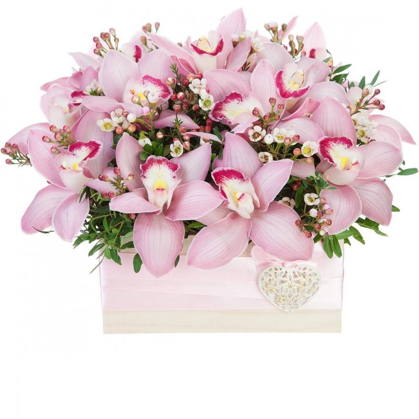 стран картинка букет орхидей красивый конечно